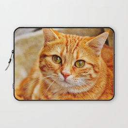 Cute red cat Laptop Sleeve