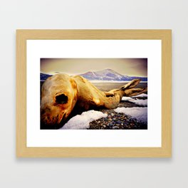 Death of a Selkie Framed Art Print