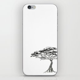 Whistling Thorn , Zen Bonsai African Tree iPhone Skin