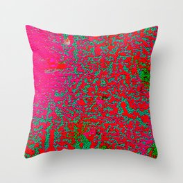 The Colorblind Initiative Throw Pillow