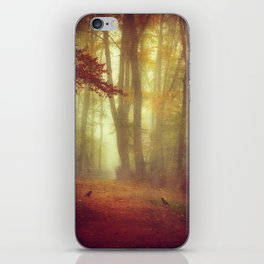 encounters iPhone Skin