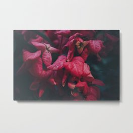 PINK - FLOWERS - FLORAL - PHOTOGRAPHY Metal Print