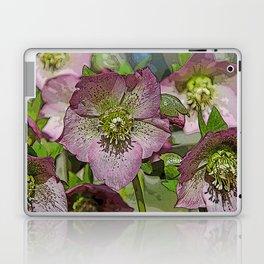 HELLEBORES FLOWERS Laptop & iPad Skin