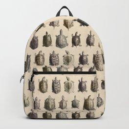 Vintage Turtles Pattern Backpack