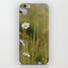 the untouched plains iPhone Skin
