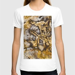 Sequoia Tree Cross Section T-shirt