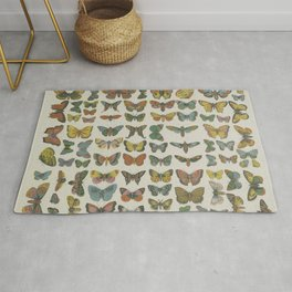 BUTTERFLIES Wall Art Decor Natural History Print - colourful butterfly litograph Rug