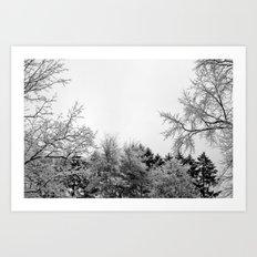Snow Branches Art Print
