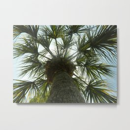 Palm Tree in The Sky Metal Print