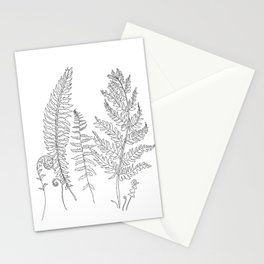 Minimal Line Art Fern Leaves Stationery Cards