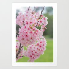 Pink is my signature color. Art Print