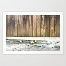 Paws Of A Waiting Bulldog Art Print