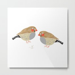The zebra finches Metal Print