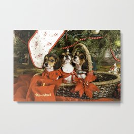 Three Tricolor Beagle Puppies in a Basket underneath a Christmas Tree Metal Print
