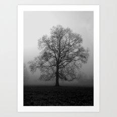 Misty Pasture Oak Art Print