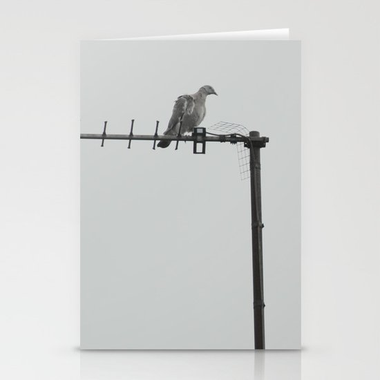 bird... Stationery Cards