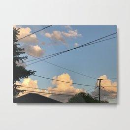 Summer in Skokie Metal Print