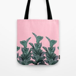Rubber trees with pink Tote Bag