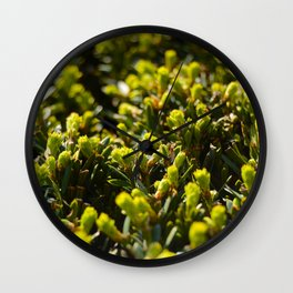 Macrocosmo Wall Clock