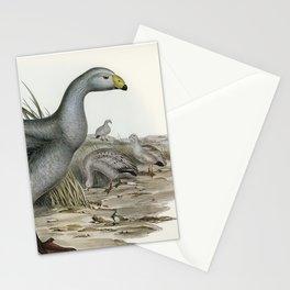 Vintage bird Stationery Cards