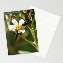 Twinning Stationery Cards
