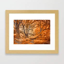 Glowing Amber Forest Framed Art Print