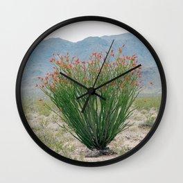 Ocotillo Plant (Anza Borrego Desert, California) Wall Clock
