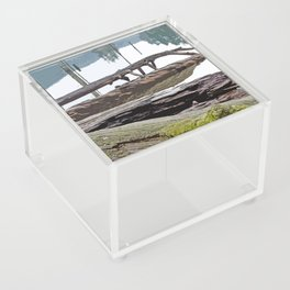 FALLEN TREES ALONG MOUNTAIN LAKE TRAIL Acrylic Box