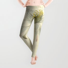 No. 13 Leggings