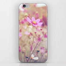 Summer Haze iPhone & iPod Skin