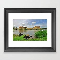Black Swans at Leeds Castle I Framed Art Print