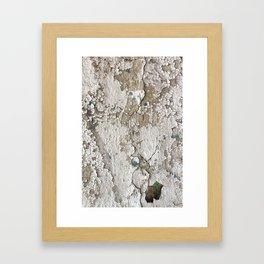 White Decay III Framed Art Print