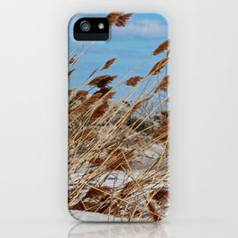 Tame a Wild Wind- horizontal iPhone Case