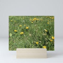 Dandelions Forever Mini Art Print