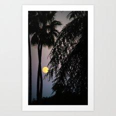 magic moon Art Print