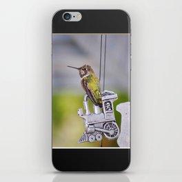 Hummingbird on Train Windchime. © J. Montague. iPhone Skin