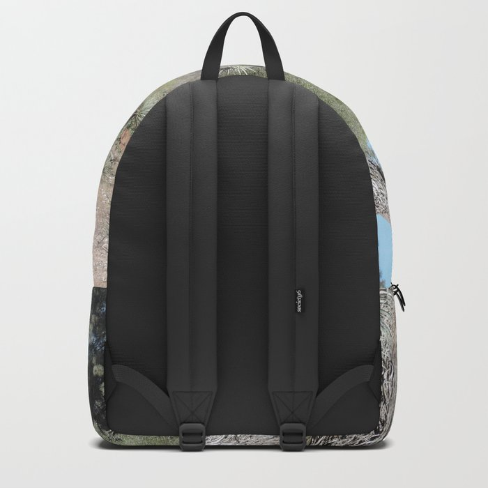 Joshua Tree Arch Backpack