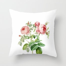 Vintage & Shabby Chic - English Roses Flower Garden Shrub Throw Pillow