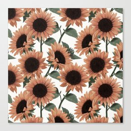 terracotta sunflowers Canvas Print