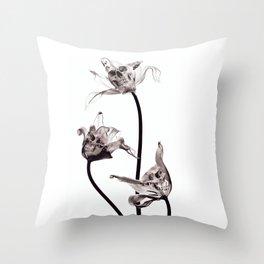 SKULL  X-RAY Throw Pillow