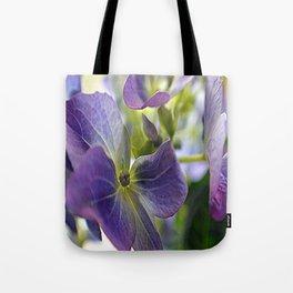 hydrangeas 6 Tote Bag