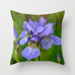 Siberian Iris by Teresa Thompson Throw Pillow