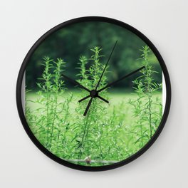 Country Road Take Me Home Wall Clock
