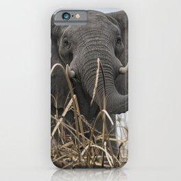 Elephant Along the Okavango River iPhone Case