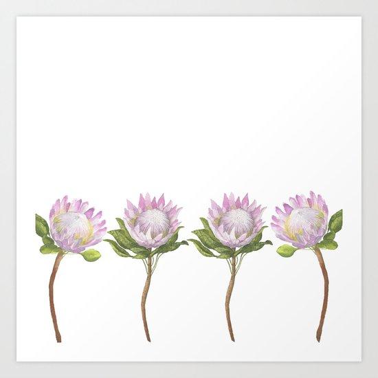 Beautiful Lotus Art Print