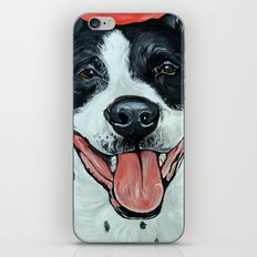 Black & White Adorable Pit Bull  iPhone & iPod Skin
