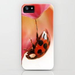 Hangin On iPhone Case