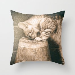 cat curiosity Throw Pillow