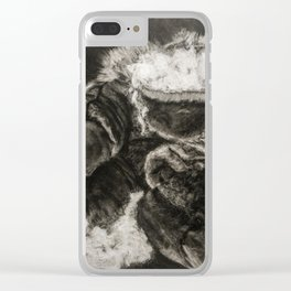 Pulp and Rind Clear iPhone Case