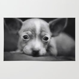 Tiny Chihuahua Rug